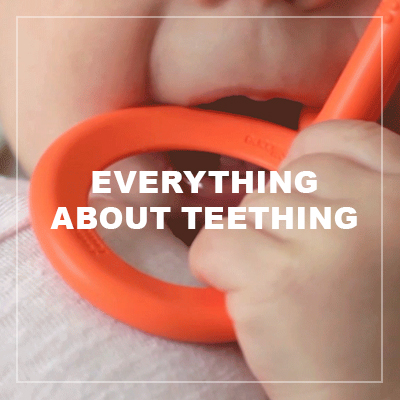everything about teething