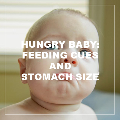hungry baby: feeding cues and stomach size