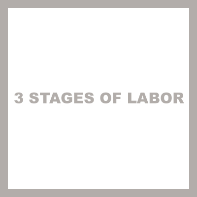 3 stages of labor cover